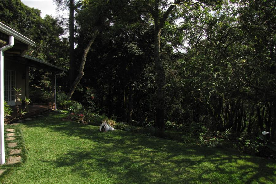 14.4ha Fruit Farm  for sale in Tzaneen - 1TA1084837 - 17