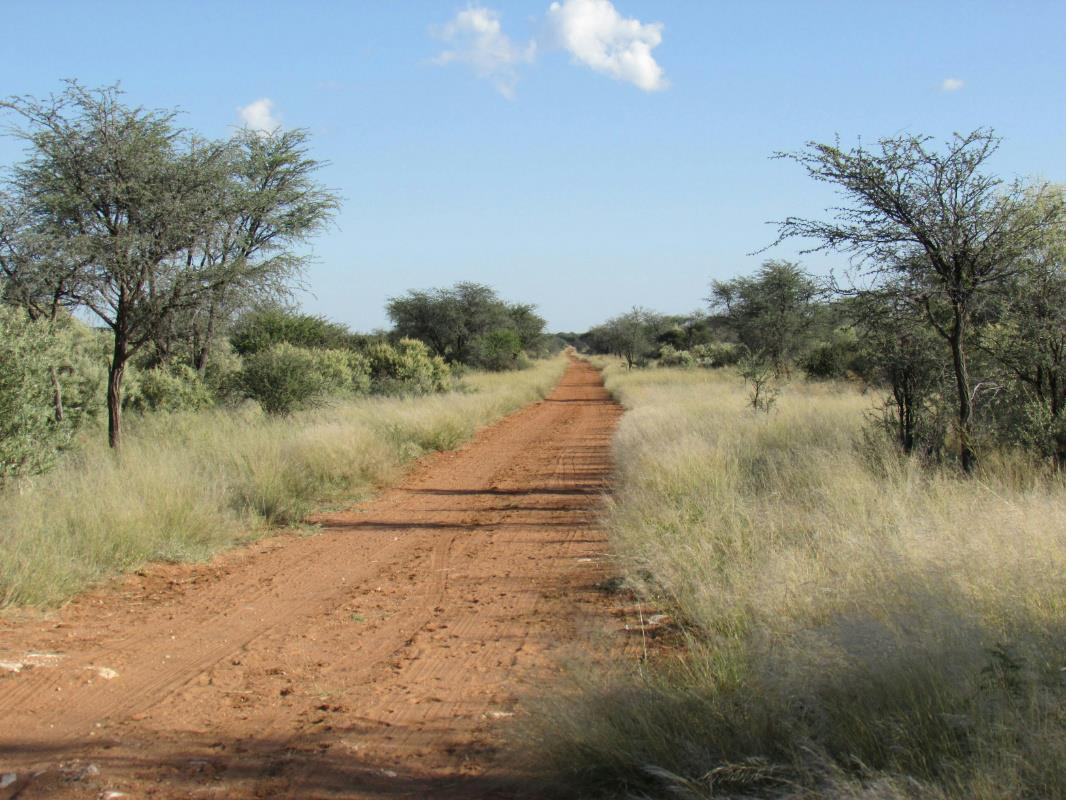 2633 Hectare Livestock Farm For Sale Gobabis Omaheke