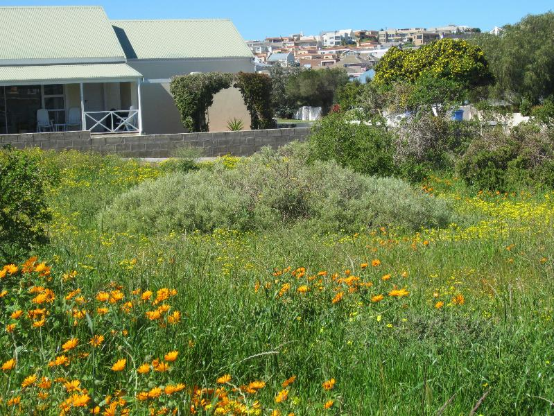 605 m² vacant land for sale in Myburgh Park