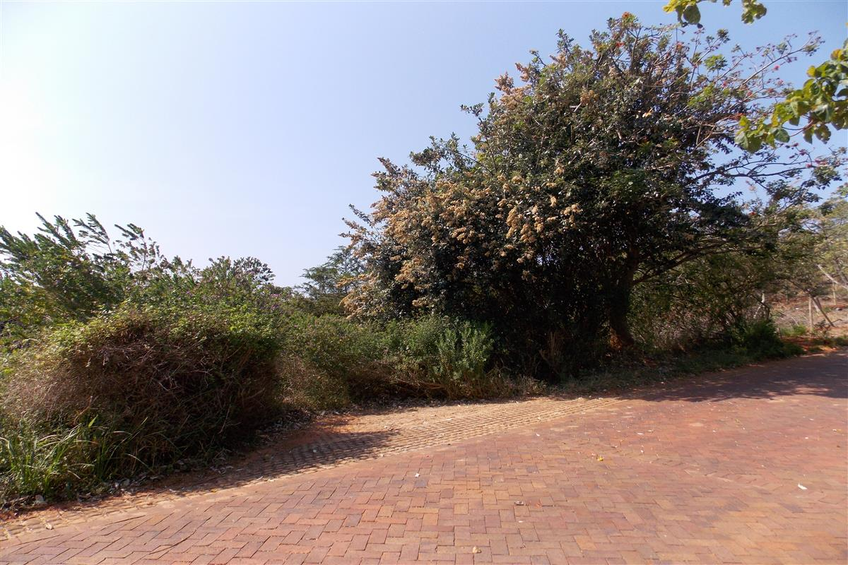 1252 m² vacant land for sale in Zimbali Coastal Resort