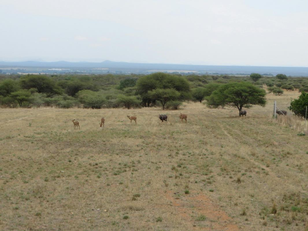 395 hectare game farm for sale in Brits