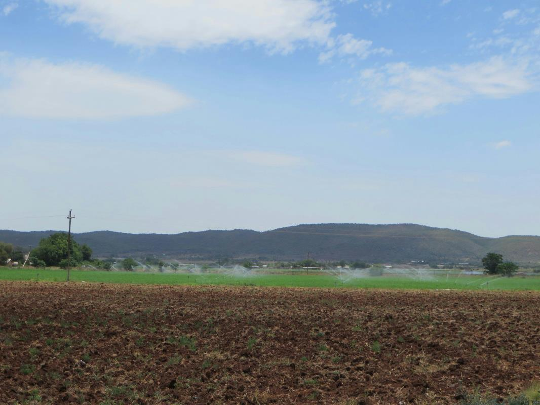 10.87 hectare mixed use farm for sale in Brits