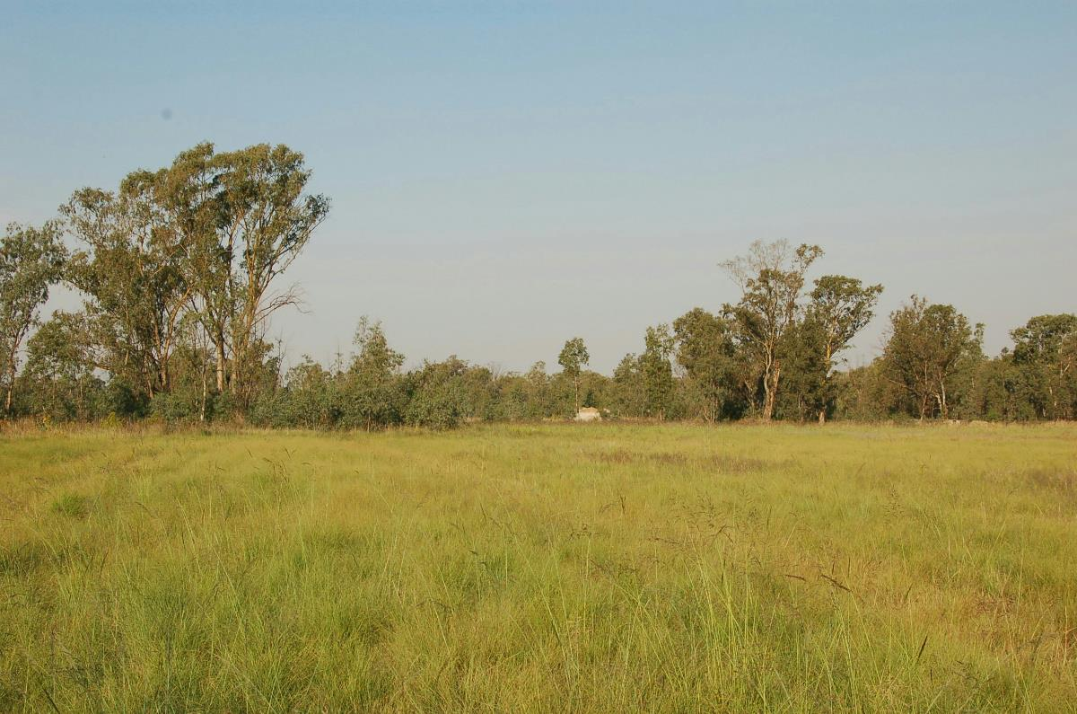 12.5 hectare mixed use farm for sale in Bronkhorstspruit