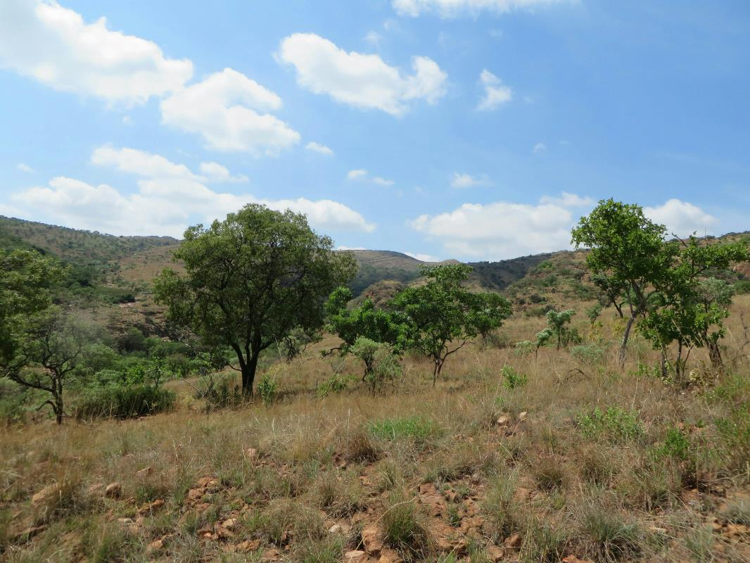 156.43 hectare mixed use farm for sale in Brits