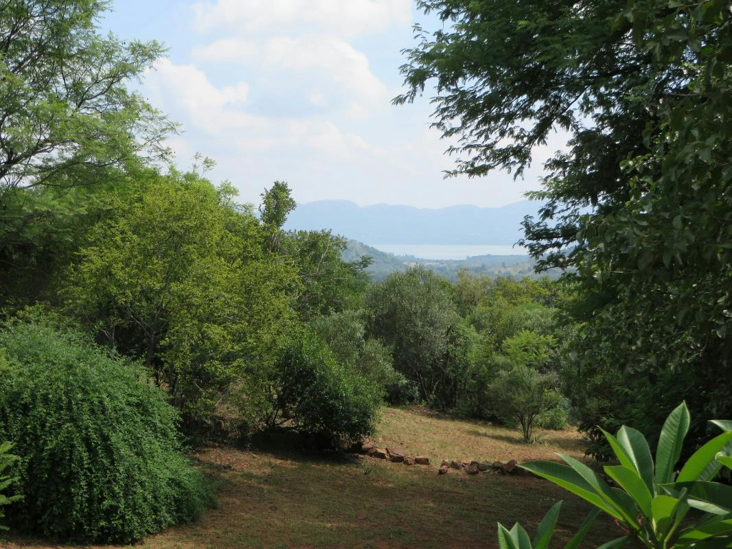 5 hectare mixed use farm for sale in Broederstroom