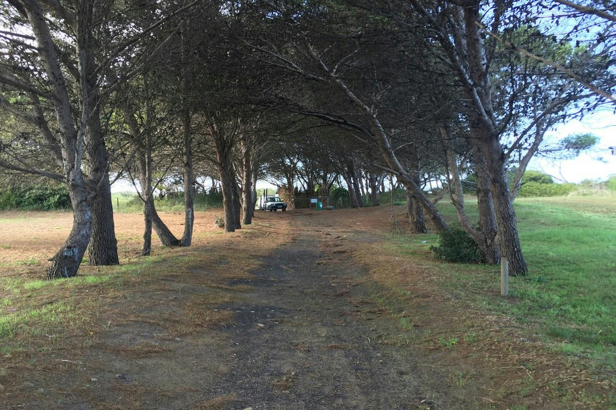 25 hectare vacant land for sale in Village
