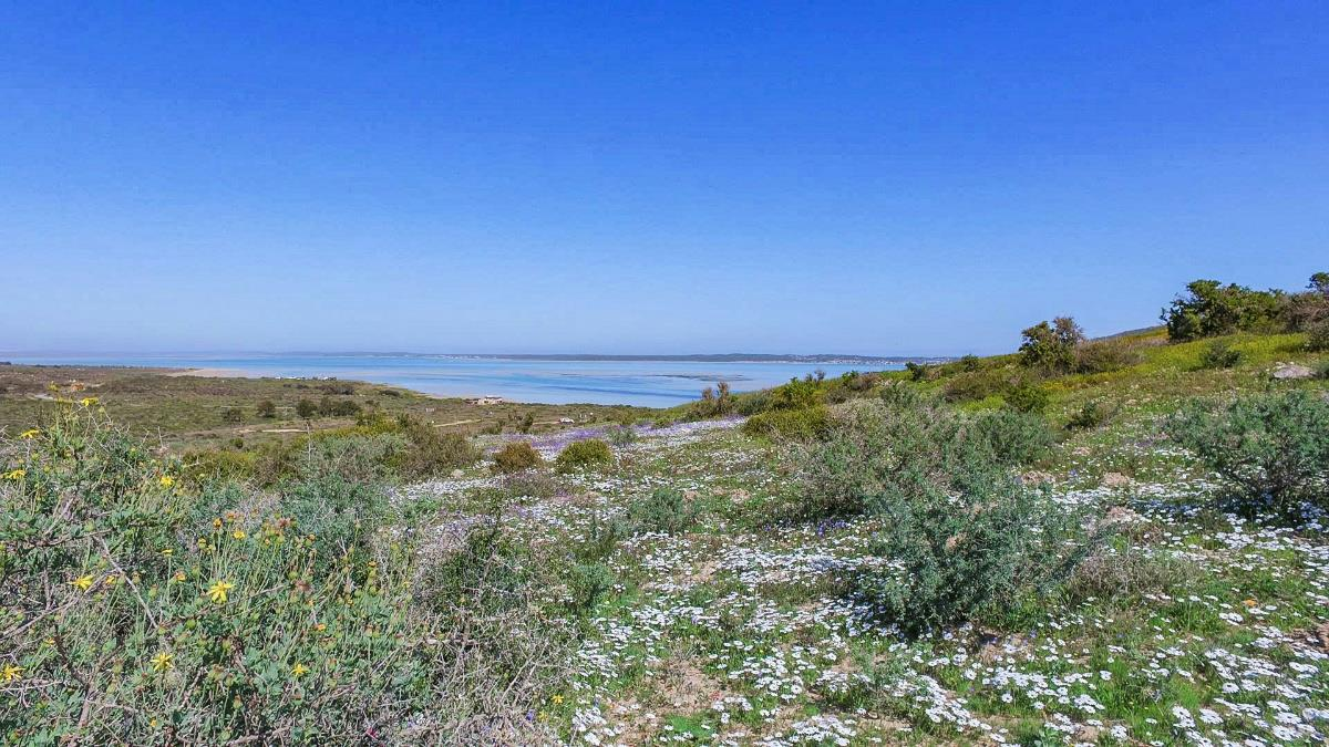 605 m² vacant land for sale in Shark Bay