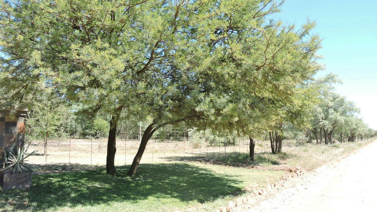 335.4 hectare game farm for sale in Swartruggens