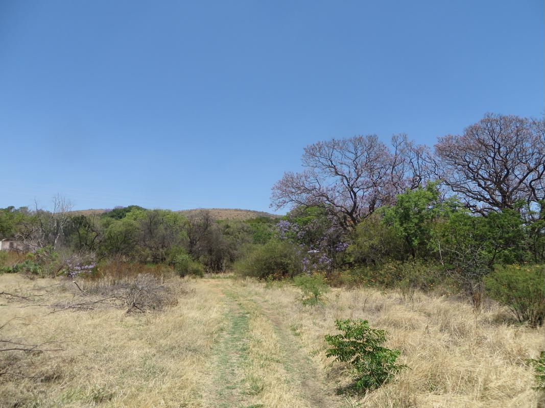 133.44 hectare smallholding for sale in Zilkaatsnek AH
