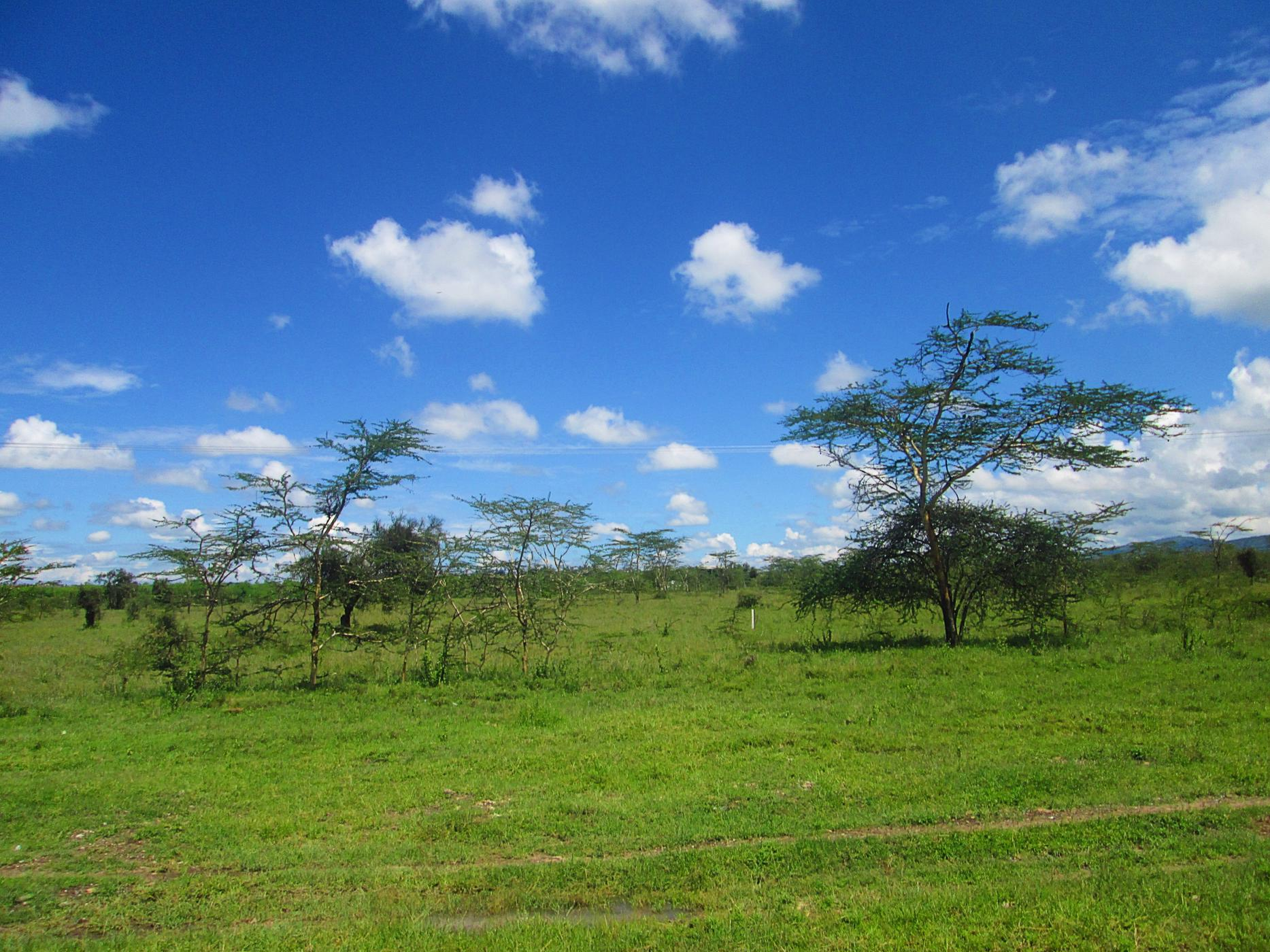 5 acres vacant land for sale in Mombasa Road (Kenya)