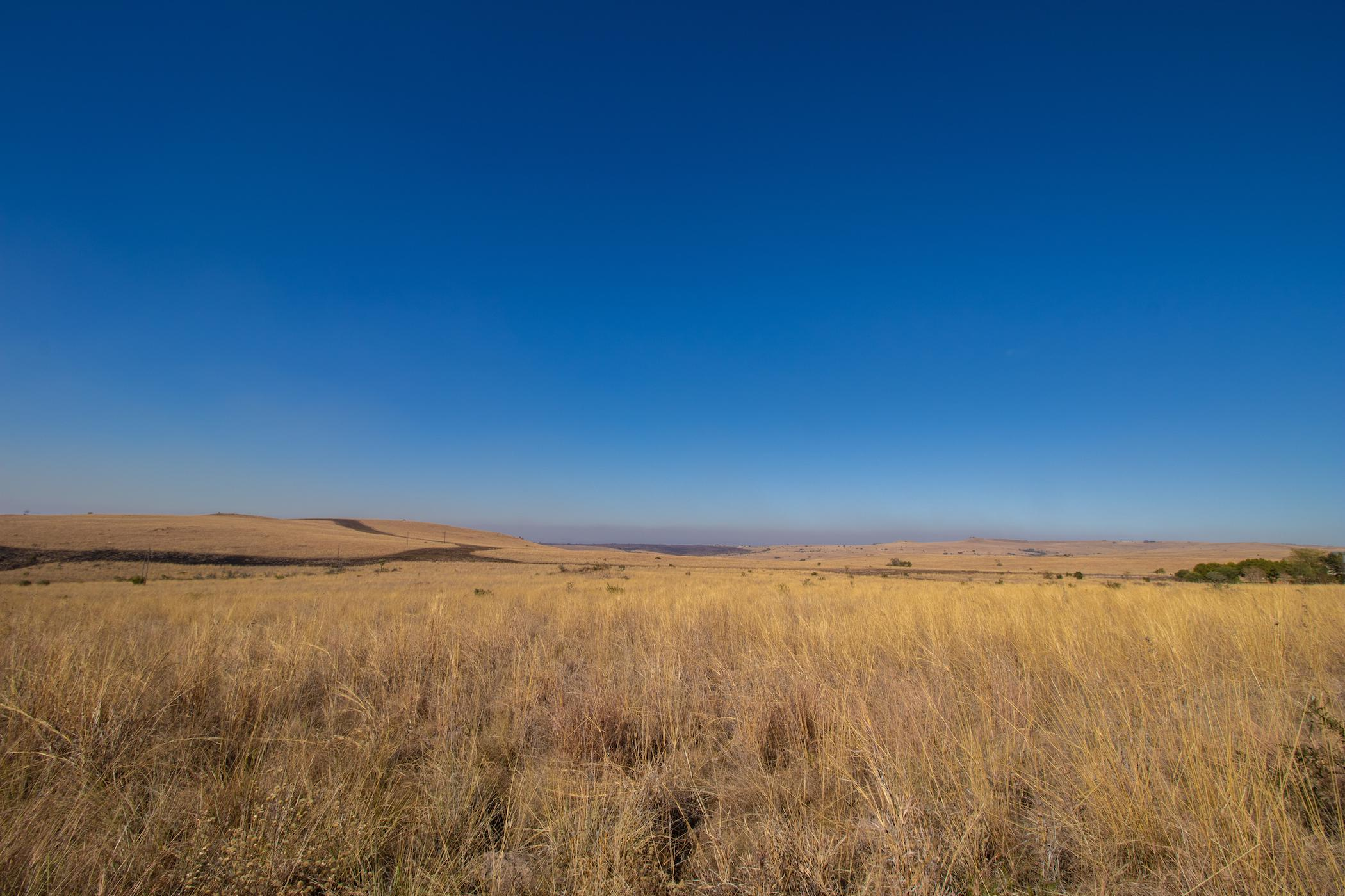 8 hectare farm vacant land for sale in Kalkheuwel
