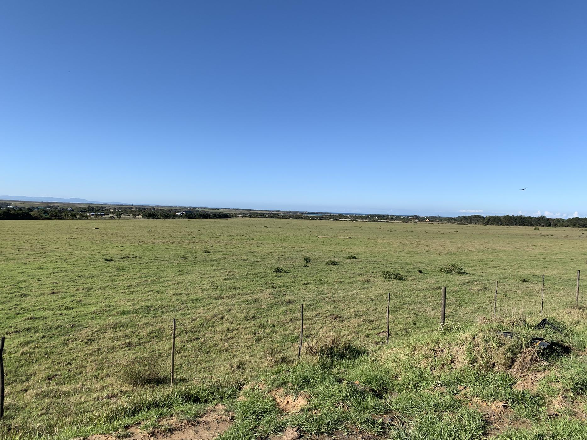 23 hectare smallholding for sale in St Francis Bay Rural