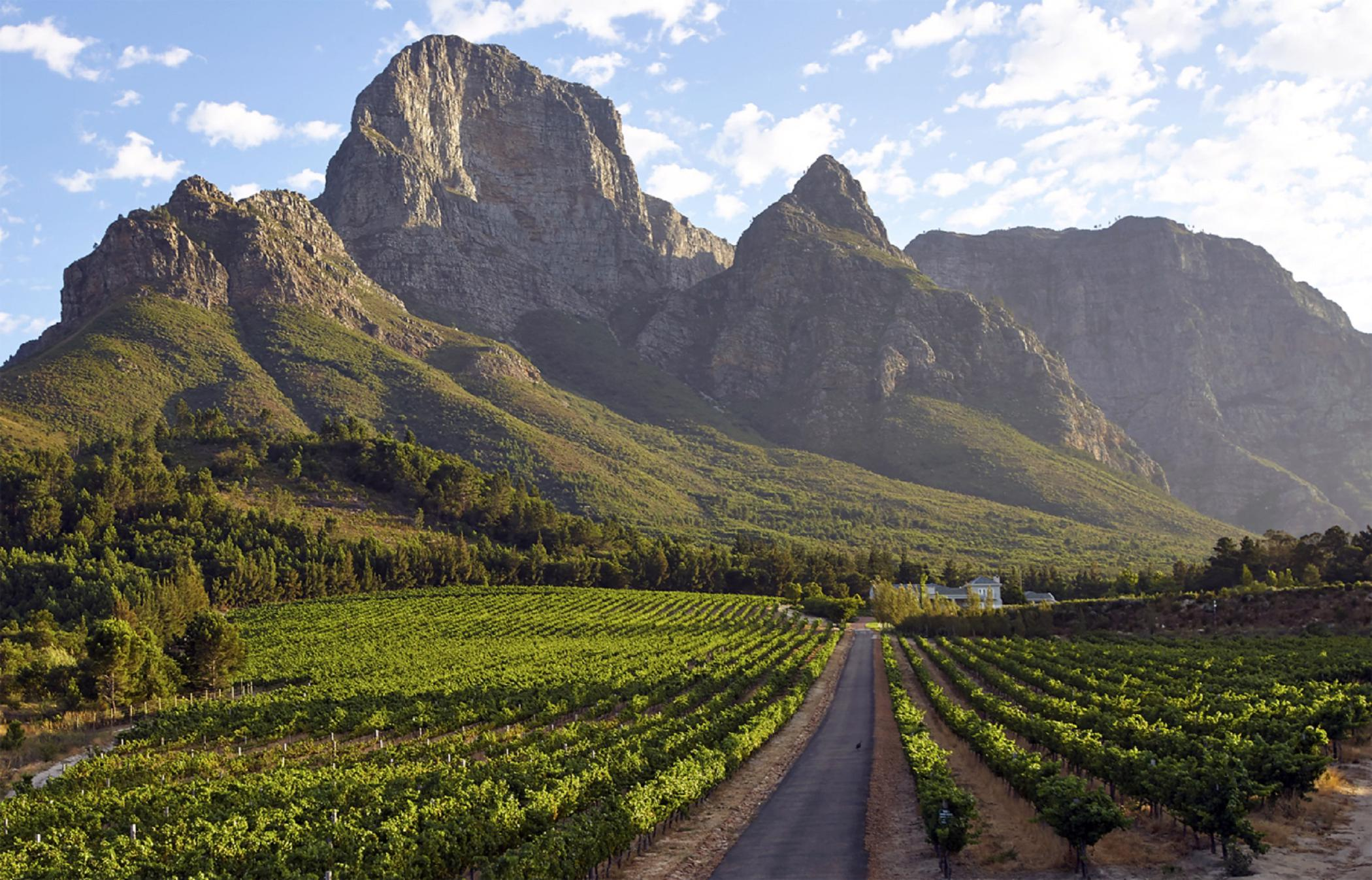 46.7 hectare wine farm for sale in Franschhoek Rural