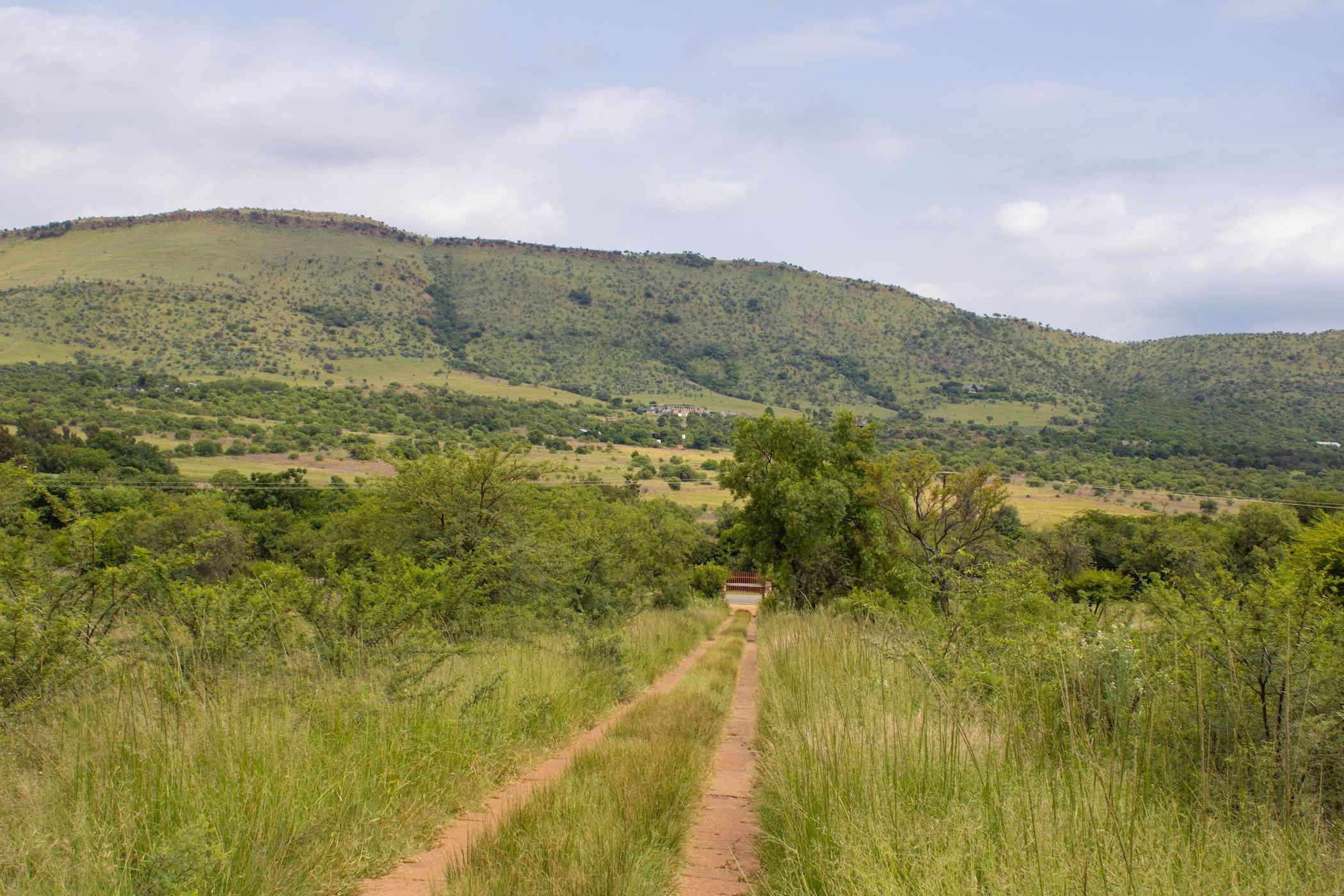 11 hectare mixed use farm for sale in Hartbeespoort