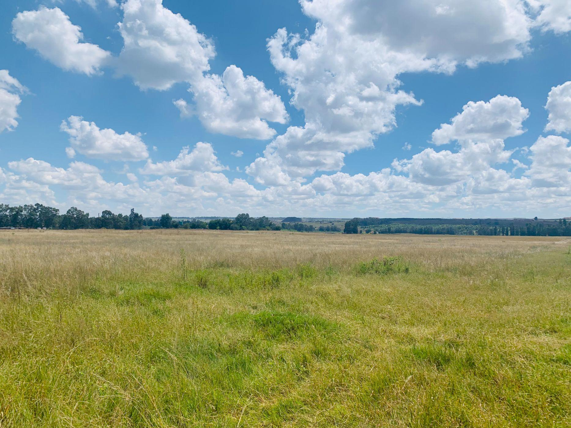 9.5 hectare farm vacant land for sale in Bronkhorstspruit