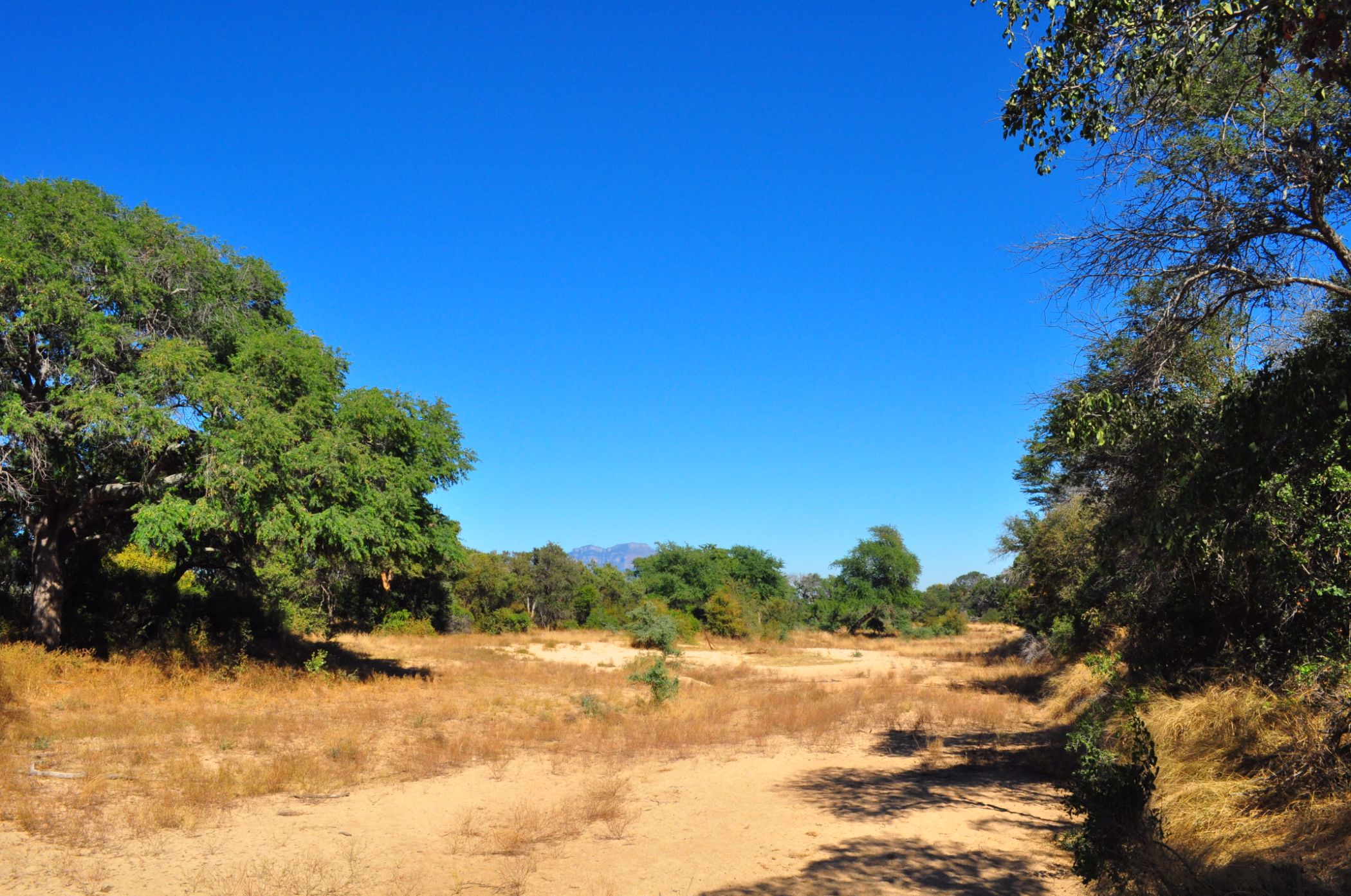 9971 m² vacant land for sale in Moditlo Nature Reserve