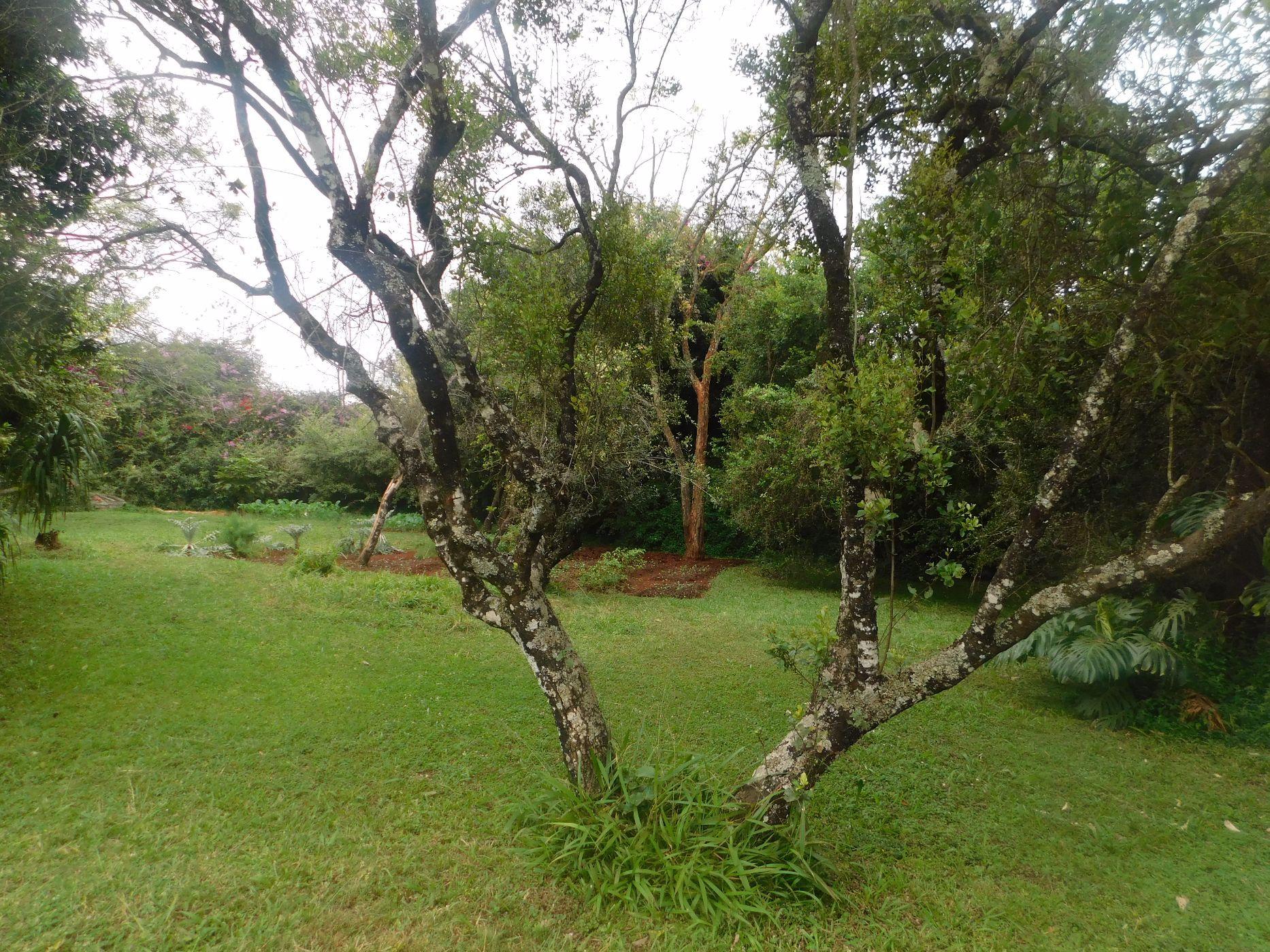 10 acres residential vacant land for sale in Karen (Kenya)