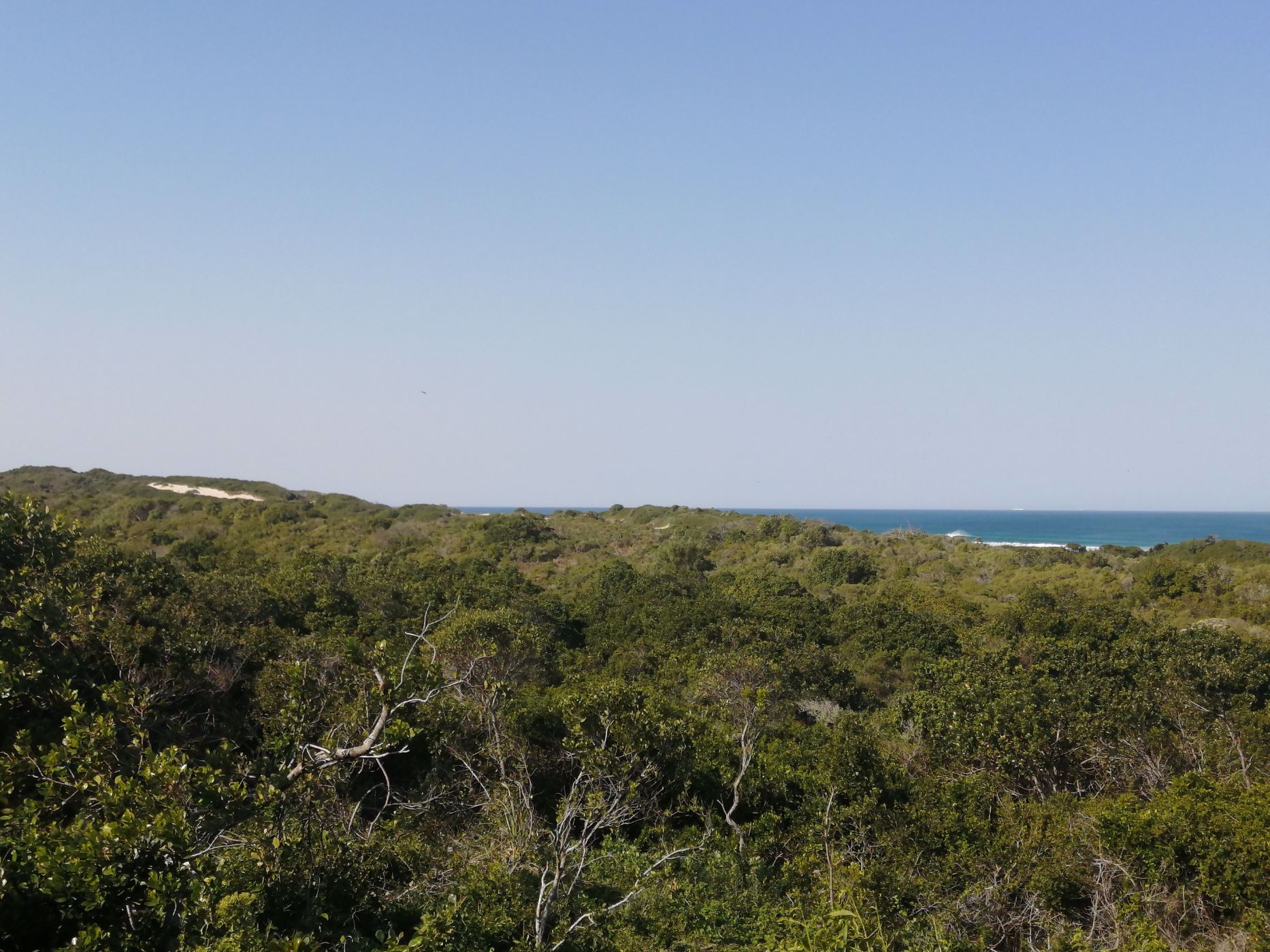 622 m² vacant land for sale in Cape St Francis