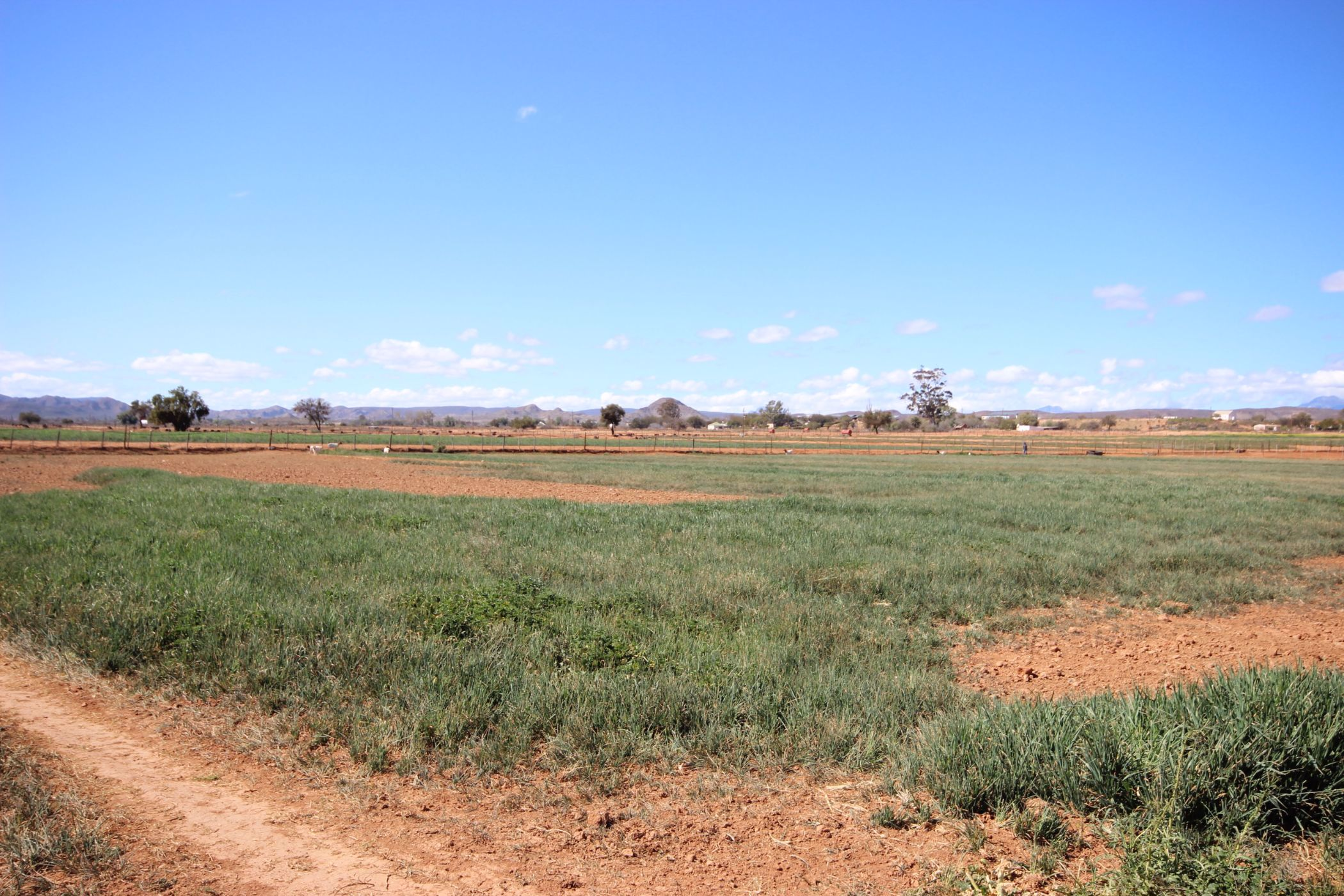 8.2 hectare farm vacant land for sale in Volmoed